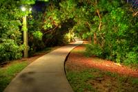 Bike path at night