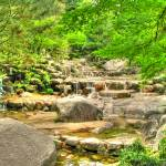 """Japanese Garden"" by MikeandAmy"