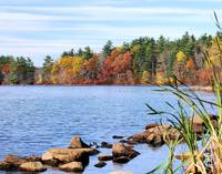 Autumn at Hopedale Pond II