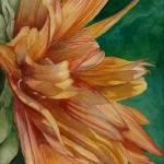 """Sunflower Daze"" by BonArt"