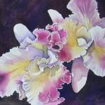 """""""Fancycat Orchid"""" by BonArt"""
