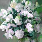 """Tommy Centerpiece pale green 2"" by LeslieTillmann"