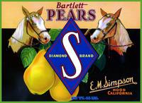 Palamino Horse Pear Label