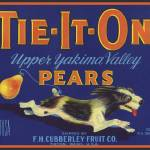 """Tie It On TIETON Dog Pear Label"" by LABELSTONE"