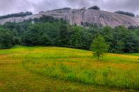 Stone Mountain Meadow