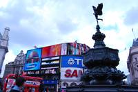 Piccadilly Dallying