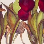 """Tulips & Giraffes"" by janporterfieldwatercolors"