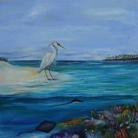 Egret on the beach(1of3)