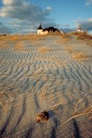 Cape May sand dunes