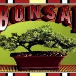 """bonsai"" by JanetStearns"