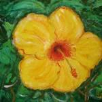 """Hawaii Hibiscus"" by HeidiZeile"