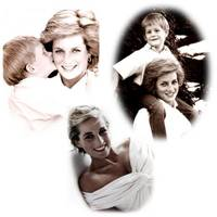 PrincessDi Collage2