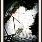 """garden stairway"" by JoannesArtwerkz"