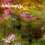 """Giverny spirit XIX"" by Woodsman"