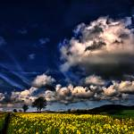 """Dramatic Fields and Clouds Scotland"" by IainGordon"