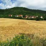 """Field in Drackendorf"" by stein"