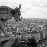 """""""Protecting Paris"""" by sibelAisha"""