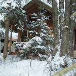 """Alaska Cabin"" by Alaska"
