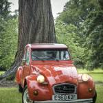 """2CV in arboretum"" by shortwork"
