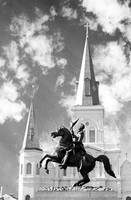 cathedral horse