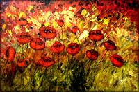 CELEBRATION OF POPPIES