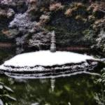 """Zen Island"" by ccsg51"