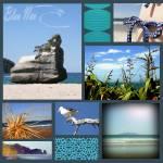 """""""Le bleu de la Nouvelle Zelande"""" by amysphere"""