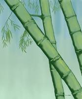 Bamboo On Green