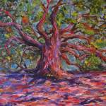 """Angel Oak"" by trosier"