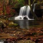 """Rainy Day at Laurel Falls"" by waterfallhunter"