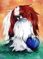 My Ball Japanese Chin Dog