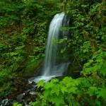 """McDowell Creek Falls"" by NickBorenPhotography"