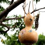"""Painted Gourd"" by boysen"