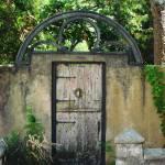 """""""Secret Garden"""" by scphoto"""