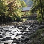 """Gatlin Creek 1"" by kwalenga"