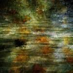 """""""Leaves Underwater"""" by JGraceyStinson"""