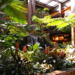 """Jungle Garden Waterfall"" by UFG8R72"