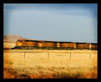 New Mexico train