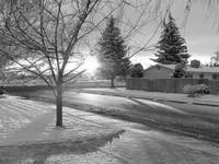 B&W Snowy morning