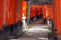 Inari Shrine, Kyoto 2007