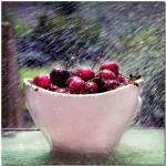 """Cherries"" by ellgmb"