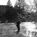 """Fly Fisherman Casting"" by davila"