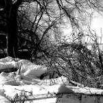 """Winter On Creighton Street"" by Gracey"