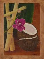 Orchid and Coconut