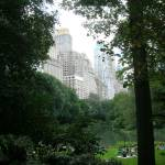 """Central Park Late Summer"" by sway"