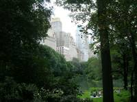 Central Park Late Summer