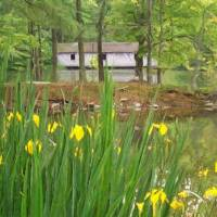 Covered Bridge at Green Mountain Art Prints & Posters by R. S. Banks