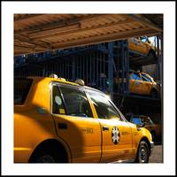 Rack Of Cabs