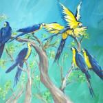"""""""Parrots"""" by clou"""