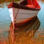 """""""Boat Reflect."""" by dapixara"""